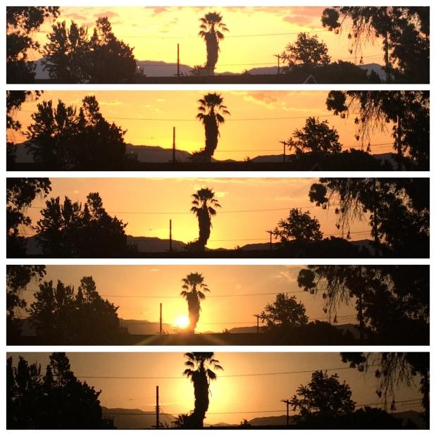 Sunrise Laps